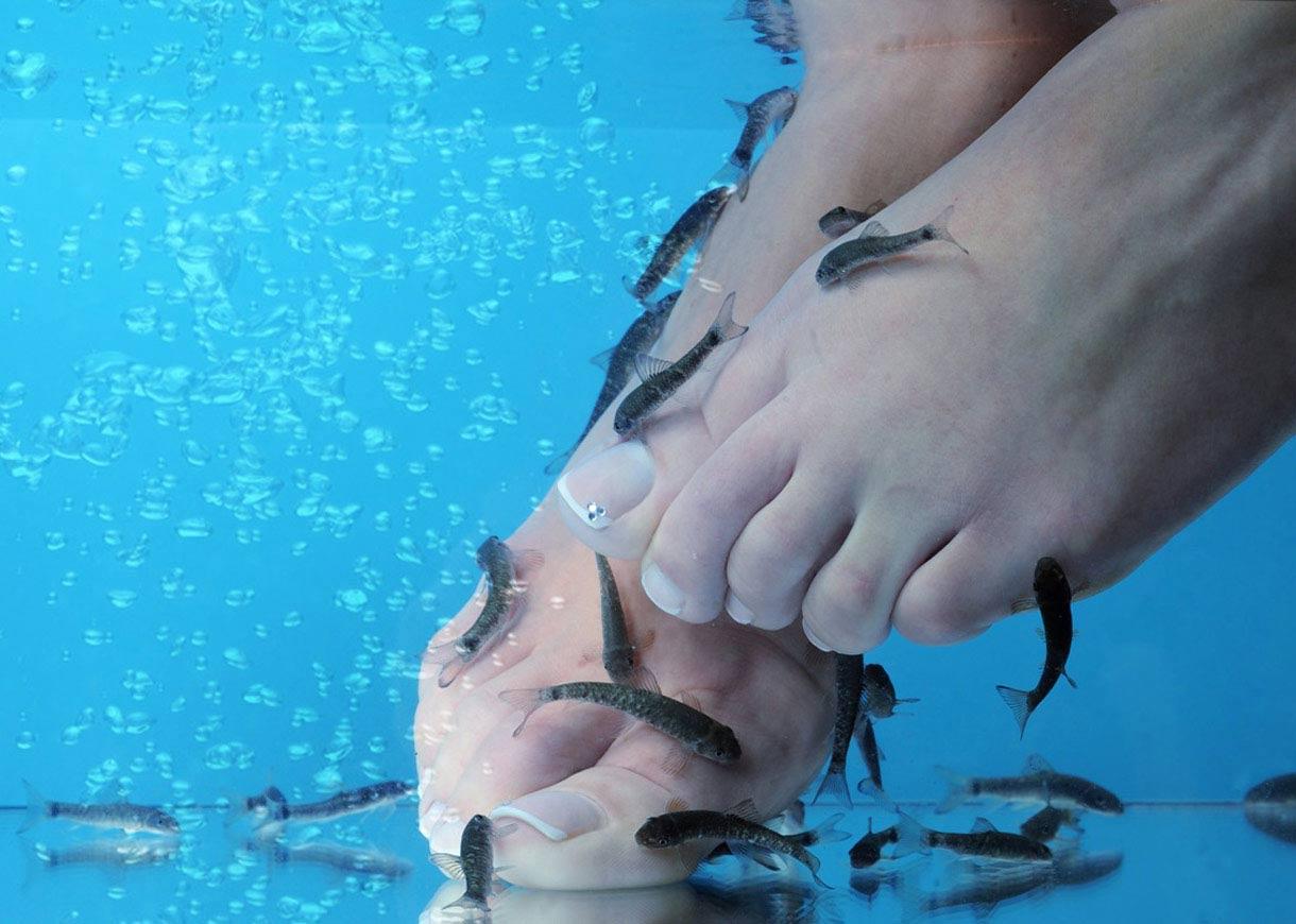 fish pédicure : efficace ou pas ?